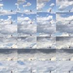 Crane Matrix 5b