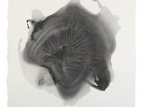 sediment-2-2016-graphite-on-paper-50x50cm