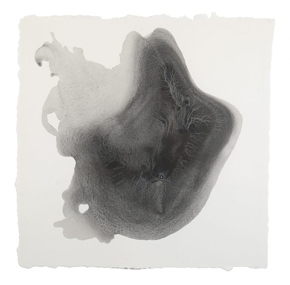 sediment-5-2016-graphite-on-paper-50x50cm