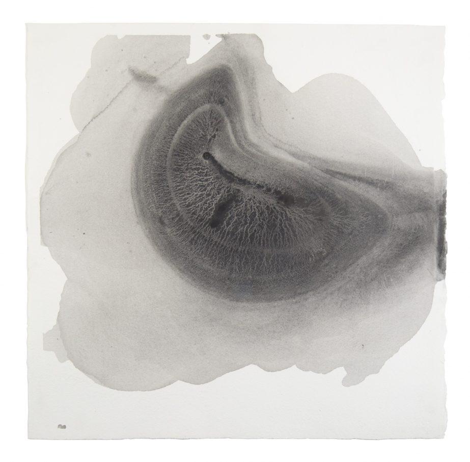 sediment-6-2016-graphite-on-paper-50x50cm