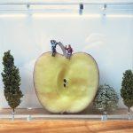 orchard-1_tls_sm